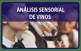 Analisis_Sensorial_Vinos