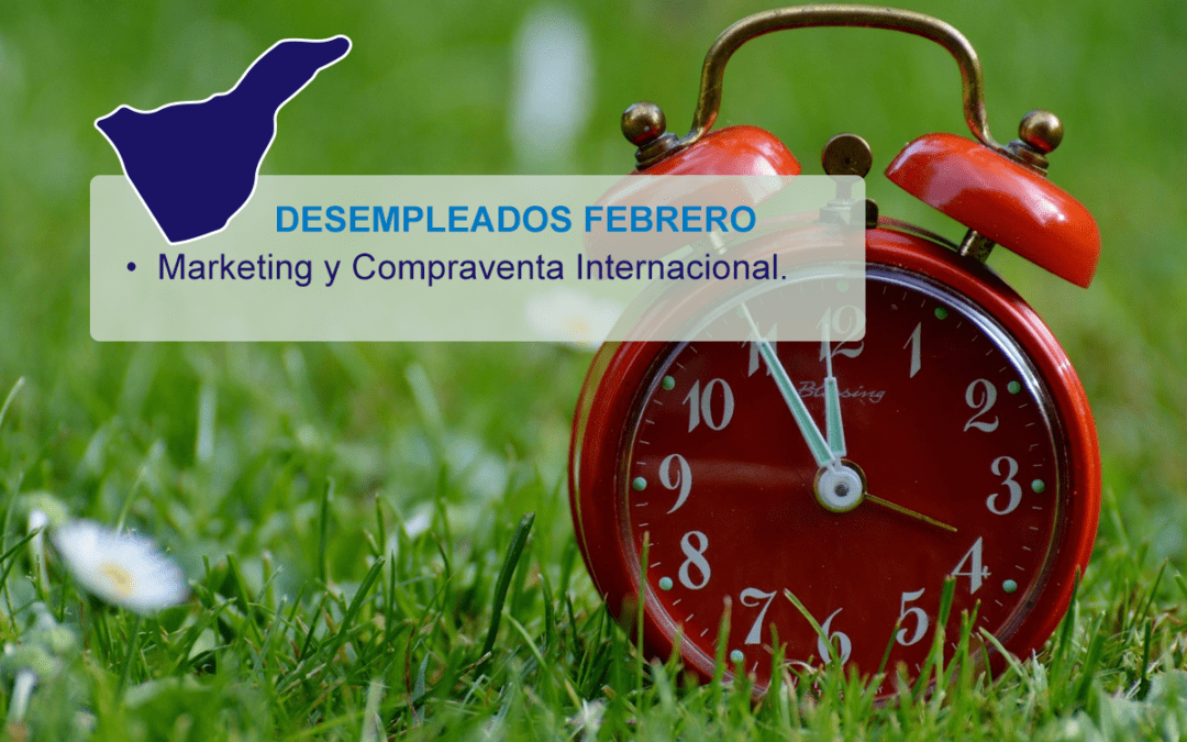 Promo Tenerife Febrero Marketing Internacional