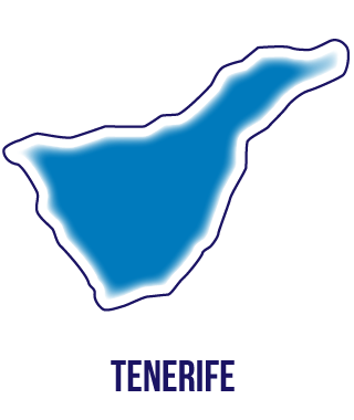 Tenerife Desempleados Instituto Focan